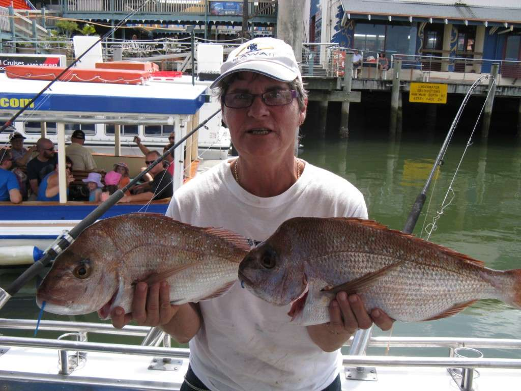 some nice squiry snapper to 4kg coming through