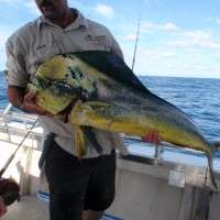 top catch charters 244