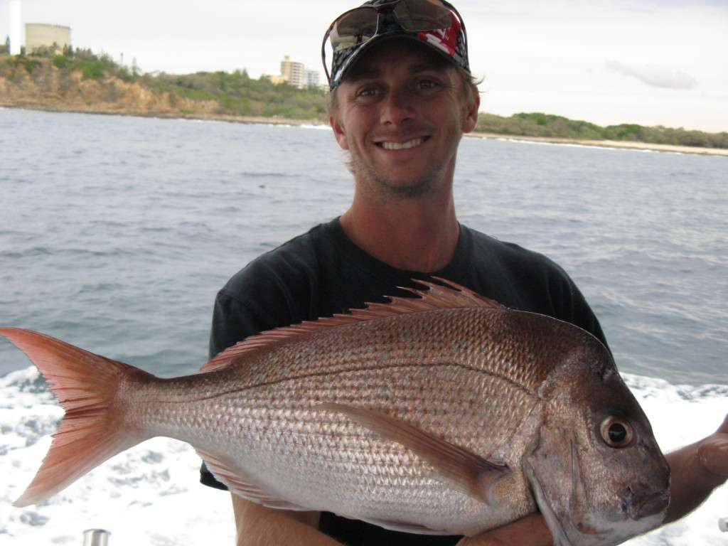 snapper to 3kg cal 9nm