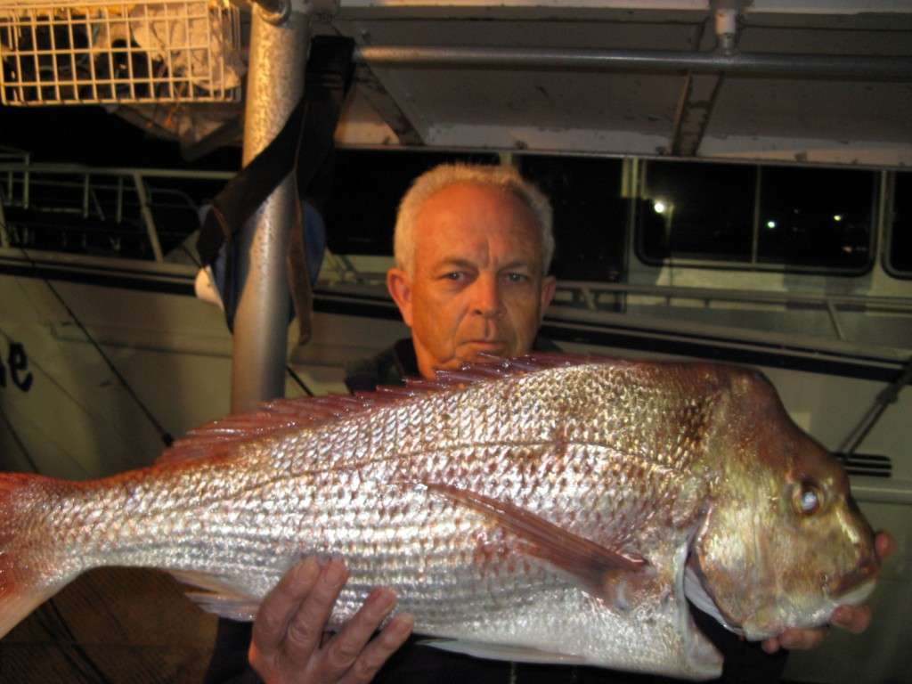 snapper to 6kg from caloundra wide