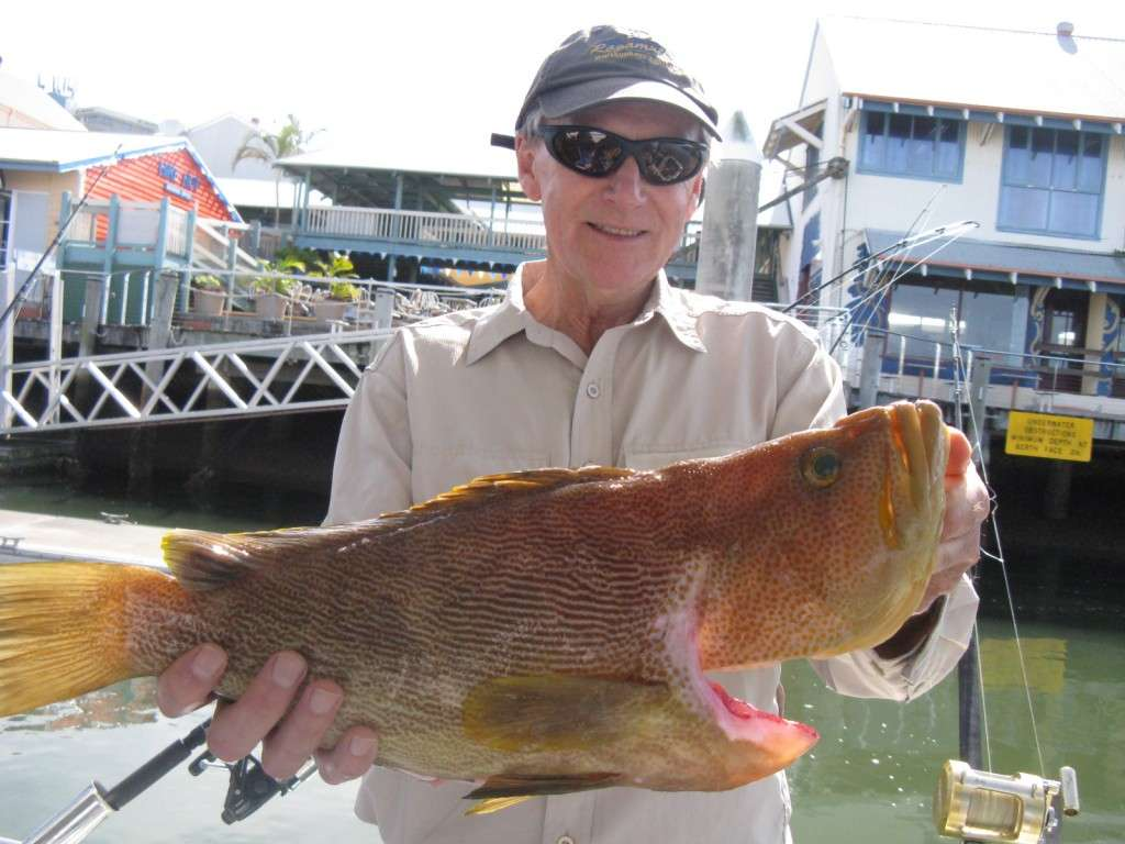 3.5kg maori cod taken on murphy's reef