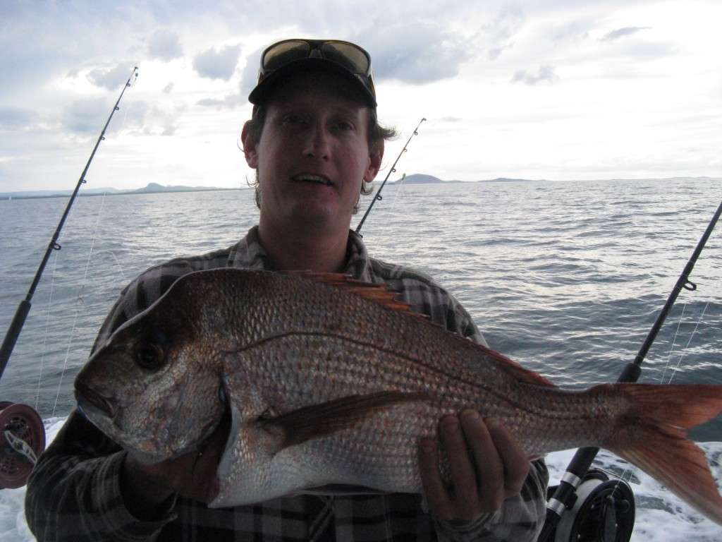 snapper up to 4kg from the barwon banks