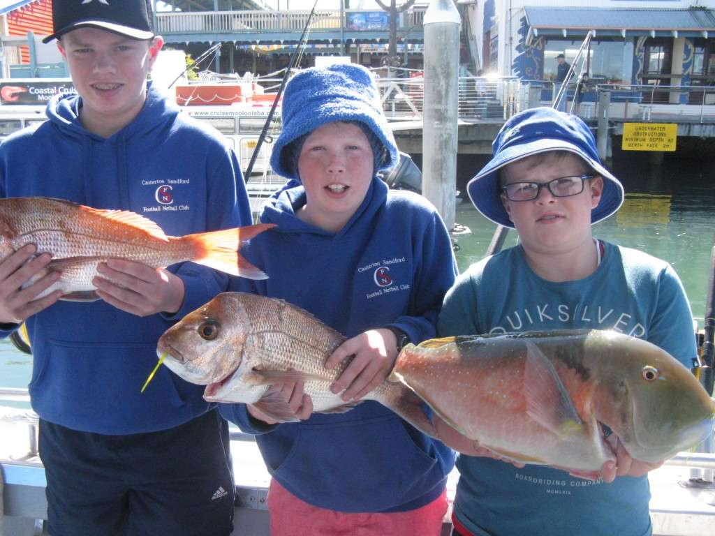 SNAPPER AND BIG TUSK FISH FROM MURPHIES