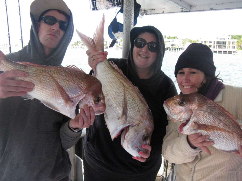 snapper to 6kg