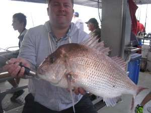 snapper to 5kg from murphies