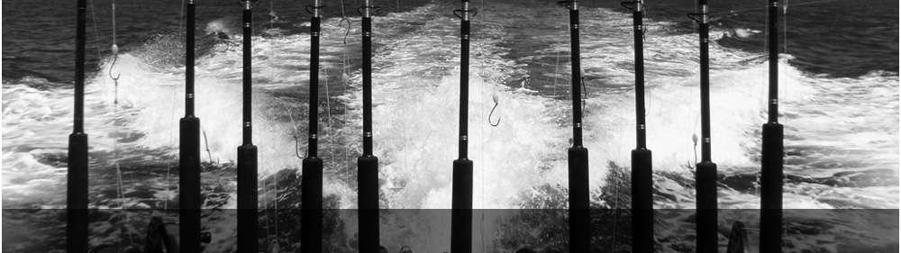 sea rods