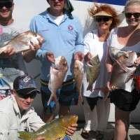 September charter tour Sunshine Coast
