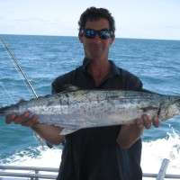 long tail tuna catch