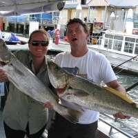 jewfish upto 90cm