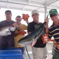 top catch 1 193