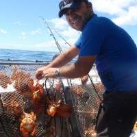 crabbing on the Sunshine Coast