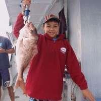 top catch fishing charters sunshine coast